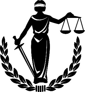 executive legislative justice branches of government and policing