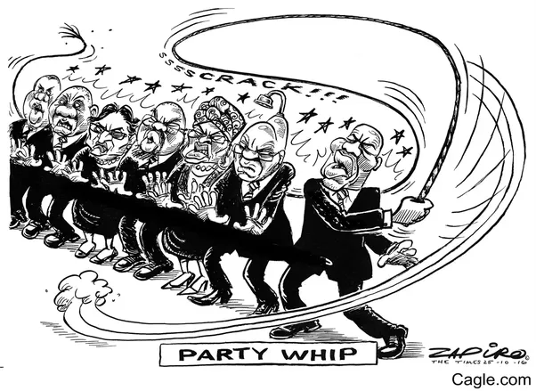 What IS the Political Party Whip??